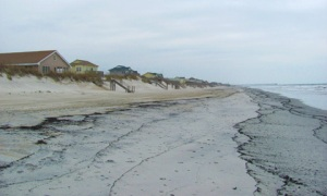 Beach on a Barrier Island