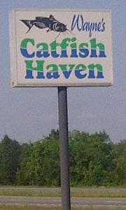 Wayne's Catfish Haven