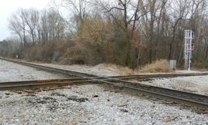 96 dpi 3x5 Corinth Rail2