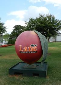 Lane's Orchard