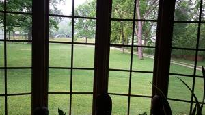 View out Balis' Bay Window