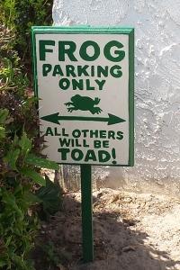 96 dpi 4x6 frog sign