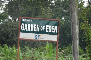 96-dpi-4x6-garden-of-eden-1