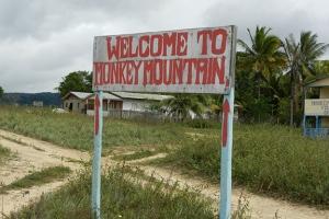 96-dpi-4x6-monkey-mountain-4